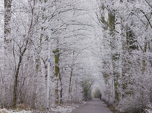 初雪-Delft-071220