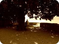 Cartolina da Pallanza (el maui / lefotodelmaui.it) Tags: old italy sepia canon lago 350d italia photographer sigma maui villa maggiore vb cartolina giulia fotografo verbano kursaal seppia verbania vco novara pallanza fujis5000 ossola cusio 40d lefotodelmauiit lefotodelmaui wwwlefotodelmauiit quelmaui