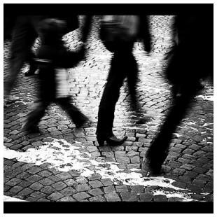 Paris Fave 3