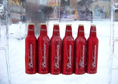 ice cold (Jennifer.Leigh) Tags: beer frozen michigan plymouth budweiser icefestival plymouthicefestival expdet012608ply