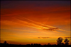 Sunday contrail sunset (algo) Tags: trees sunset sun photography topf50 bravo topv1111 topv999 silhouettes topv222 algo magicdonkey 50f 10faves mywinners platinumphoto 200750plusfaves