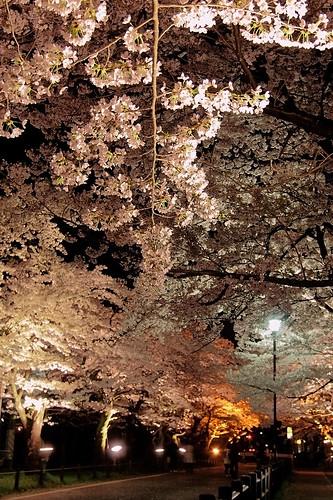 muramatsu park 4