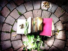 meditation_0050 [ books on bricks ] (Mary Bogdan) Tags: art de artist assemblage documentary books human math document psalms dictionary quotations slovenian humument documentaire marybogdan lhomme humumentary documentomme