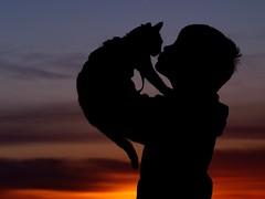 M & M (Kirsten M Lentoft) Tags: boy sunset marie cat denmark bravo silhouettes kitty soe mads themoulinrouge kissablekat platinumphoto anawesomeshot aplusphoto momse2600 infinestyle theunforgettablepictures thegardenofzen life~asiseeit multimegashot mmmmmuahhhhh magicdonkeysbest 100xfave obq kirstenmlentoft magicunicornverybest —obramaestra— newgoldenseal