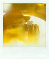 (Raymond Molinar) Tags: camera film polaroid sx70 one 1 filter 600 land alpha expired density neutral