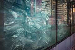 20170209-JHenryNesting-10 (cityoflasvegasPIO) Tags: art artexhibit artwork cityhall firststreet flockflockflock gallery jenniferhenry lasvegas nesting nevada vegas sylvester collier