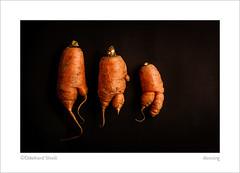 dancing (ekkiPics) Tags: carrot food studio strobist organic