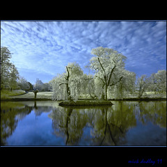 WILLOW POND (mickeydud) Tags: england nature landscape ir countryside kent nikon village infrared british d200 cultures naturalworld chislehurst villagelife naturesfinest villagepond idream worldwidelandscapes natureselegantshots thechallengefactory naturescreations mickeydud storybookwinner af~sdxnikkor16~85mmf35~56edvr