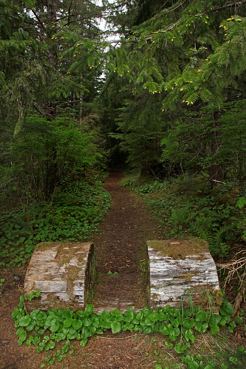 begin of trail to Chief Son-i-Hat Whale House, Kasaan, Alaska