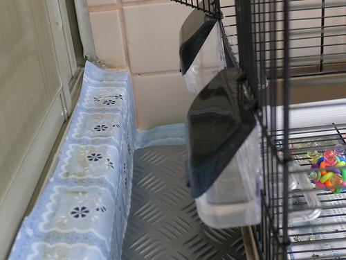 房間外的小陽台 (改裝為大型鳥籠)