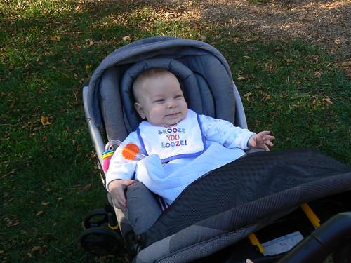 JSL hanging out in the stroller