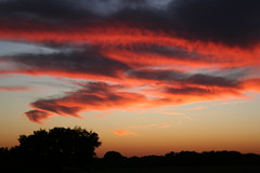 Finally in October... (basilly) Tags: pink sunset sky orange rural texas sundown country soe noediting naturesfinest blueribbonwinner mywinners abigfave anawesomeshot unature superbmasterpiece diamondclassphotographer flickrdiamond excellentphotographer flickrelitegroup