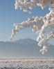 Pikes Peak Winter (twnklmoon) Tags: blue winter snow cold ice colorado springs breathtaking potofgold abigfave platinumphoto anawesomeshot aplusphoto top20white top20everlasting