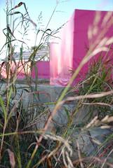Little Pink Houses (NOGoddess) Tags: green choir katrina neworleans 9thward friendly lower bradpitt eco gospel sustainable jazzband preservationhall littlepinkhouses rebuilding ninthward
