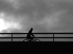 Nog een eenzame fietser (bogers) Tags: street city urban holland netherlands bike bicycle foto nederland citylife denhaag haaglanden portfolio  thehague bogers fahrrad fietsen vlo stad fiets straat  zuidholland   sgravenhage  haags hofstad duth straatfotografie basbogers straatfotograaf  26012008 straatfotografiecom