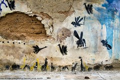 Zoo (server pics) Tags: street urban streetart elephant art texture animals wall greek zoo graffiti artist arte picture athens textures greece exotic grecia photograph artists writers giraffes writer grce pintura  grafite  griekenland athnes       athensstreetart serverpics  incrediblewalls