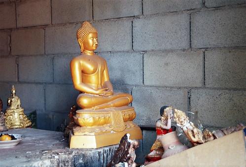 buddha_5.jpg