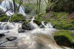 Cataract Falls #4 (leapin26) Tags: california waterfall falls marincounty fairfax mttamalpais cataractfalls marinmunicipalwaterdistrict mywinners ultimateshot superbmasterpiece diamondclassphotographer
