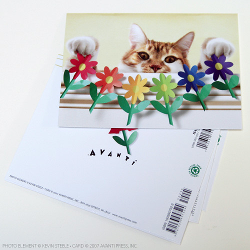 Toby's new card