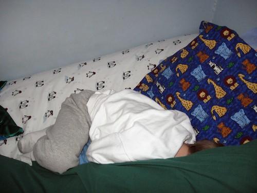 Sleeping in pillow land
