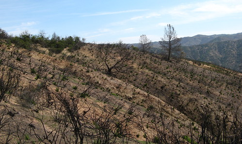 More hillsides cleared by the fire.