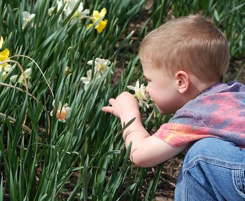 April 16 - Arboretum