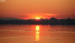 IMG_3485 copie (AlainG) Tags: sunset sun france canon de soleil pond colours couleurs south coucher 5d etang herault thau anawesomeshot ballaruclesbains