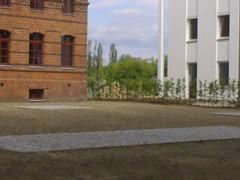 Im Hintergrund Lichtenberger Platte