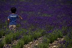 Happy (takay) Tags: boy flower japan landscape happy lavender gunma beautifulscenery   tanbara takay