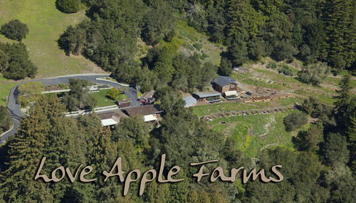 Aerial shot of Love Apple Farm, Feb 2011