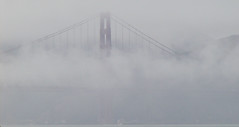 Monster in the mist