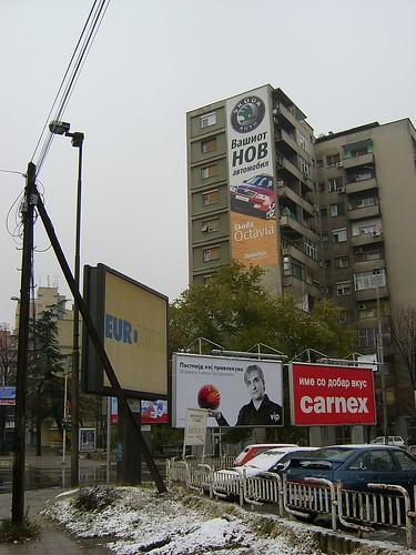 S3600048