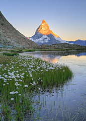 Matterhorn & cottongrass in the morning (SamCotton) Tags: mountain lake reflection sunrise switzerland matterhorn cottongrass