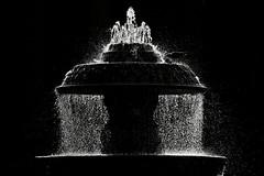 fontana in controluce a san pietro (duegnazio) Tags: 2008 duegnazio canon350d roma fontana controluce bn biancoenero bw blackandwhite sanpietro romamor gabbiano gull bwartaward q8 aquaromanorum italia italy lazio rome acqua water backlight clubromanofotografiabw fountain