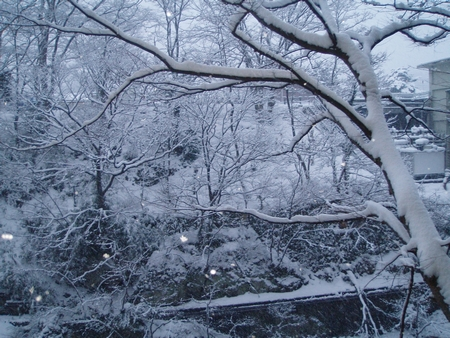 tn_飯店雪景 (6)1