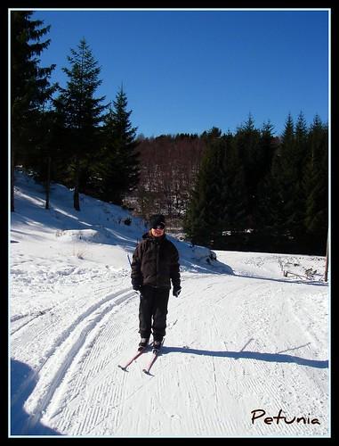 Bulle på ski