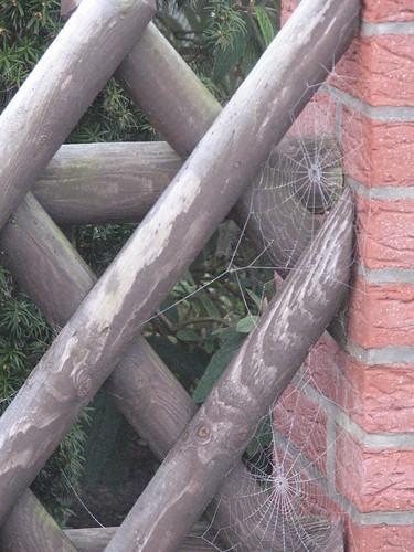Spinnennetze am Pfeiler