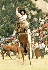 Se alzando (Eduardo Amorim) Tags: horses horse southamerica caballo uruguay cheval caballos cavalos prado montevideo pferde cavalli cavallo cavalo gauchos pferd hest hevonen chevaux gaucho  amricadosul montevidu hst uruguai gacho  campero amriquedusud  gachos  sudamrica suramrica amricadelsur  sdamerika jineteada   camperos americadelsud gineteada  americameridionale campeiros semanacriolla semanacriolladelprado campeiro eduardoamorim