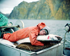 Matt_and_Halibut (coreyfishes) Tags: ocean sea snow color ice dutch weather animal alaska danger harbor photo fishing fisherman king arnold picture wave crab corey human catch kingcrab discovery harsh beringsea crabbing rollo bering snowcrab opilio deadliest deadliestcatch coreyfishes
