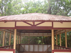 shed final stages (heartsdelight621) Tags: hall social kukuihaele