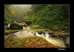 (Ali Shokri / www.alishokripix.com) Tags: autumn fall nature colors beautiful landscape waterfall bravo perfect searchthebest iran shots quality azerbaijan loveit just chapeau excellent iranian photoart soe ايران themoulinrouge علی naturesfinest goldenglobe blueribbonwinner firstquality littlestories supershot تبريز 5photosaday viewwhore outstandingshots flickrsbest spselection utatafeature abigfave shieldofexcellence platinumphoto anawesomeshot superaplus aplusphoto ultimateshot holidaysvacanzeurlaub superbmasterpiece infinestyle favemegroup4 treesubject diamondclassphotographer flickrdiamond megashot allin1 bratanesque ysplix amazingamateur excellentphotographerawards superlativas theunforgettablepictures onlythebestare eliteimages naturewatcher excapture flickrslegend betterthangood theperfectphotographer goldstaraward ostrellina flickrestrellas picswithsoul showmeyourqualitypixels alemdagqualityonlyclub wwwalishokricom alishokri شکری