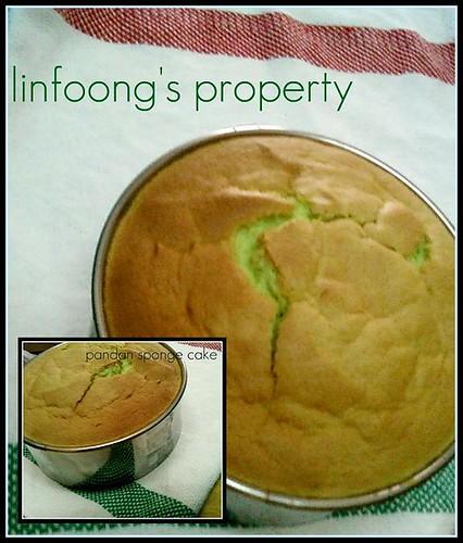 pandan sponge cake yummy