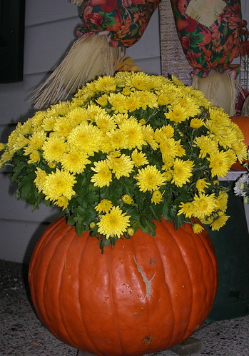 porch_pumpkin