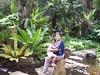 at the Orchidarium