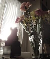 Bronze + Bouquet (mckenzieo) Tags: flowers sculpture window glass female bronze naturallight gerbera daisy vase torso bouquet carnation patina pedigree pedestal miniblinds chrysanthenum myfirstbronze