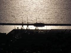 DOCKS (giotto1959) Tags: sergio docks novembre olympus porto trieste adriatic controluce 2007 gru adriatico triest giotto olympussp500uz novembre2007 giotto1959 olympusuz500sp ilportoditrieste