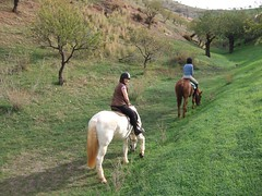 DSCF0571 (geeplums) Tags: rancho 2007 ferrer