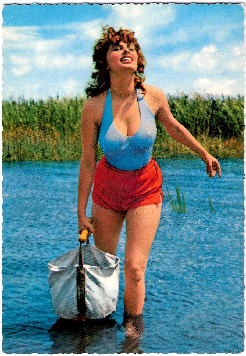 Sophia Loren. go back