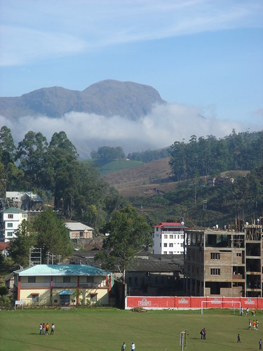 munnar morning view