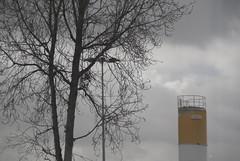 (antonioluisousa) Tags: reflection tree me portugal lamp j with lisboa zenog holysloot dontknowwhat a2006maria1 pontoevirgula